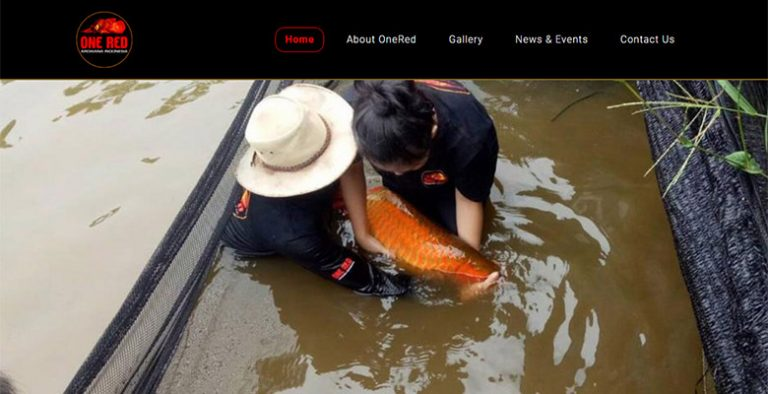 website arowana indonesia